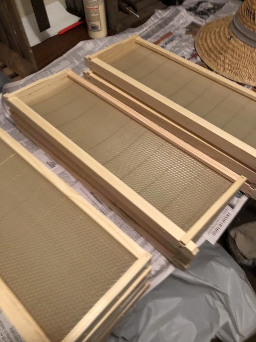 beeswax wired foundation for the new hives