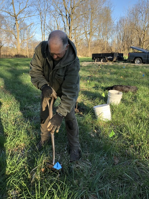 planting the orchard