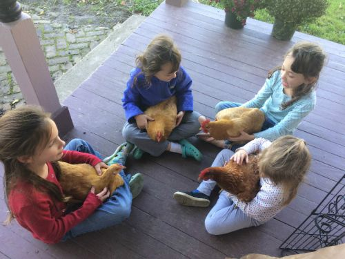 Kids with the chickens