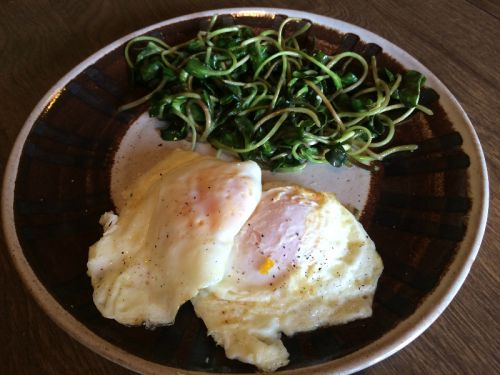 Fried eggs & Microgreens