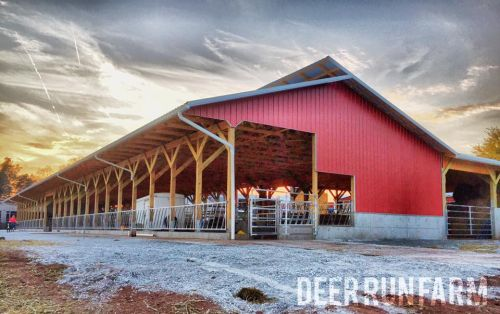 Deer Run Farm's new cattle building