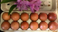 Organic Chicken Eggs