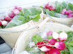April 30th....1st CSA basket delivery in Westhaven