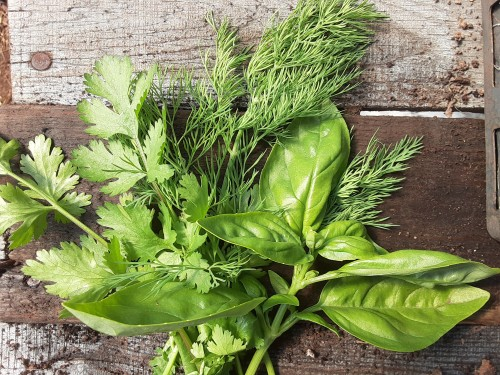 Herb bunches