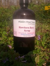 Abington Meadows Hawthorn Berry Syrup - 16 oz.