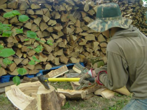 Winter wood supply - compliments of our grandson!