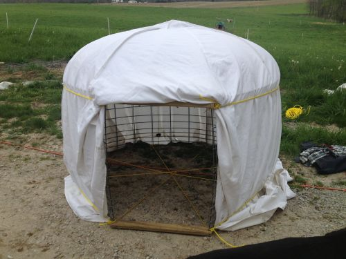 This is our pig yurt. Very light weight - 2 people can carry it easily.  We use it in the summer when we rotate our pigs.