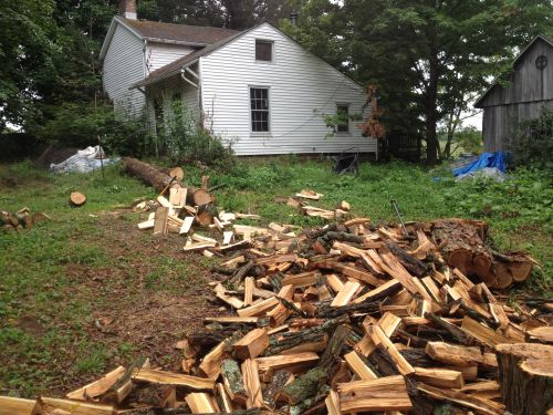 Winter wood supply - thanks to grandson Justin