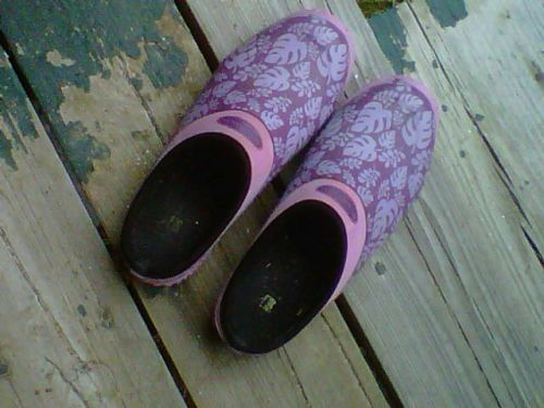 Purple clogs