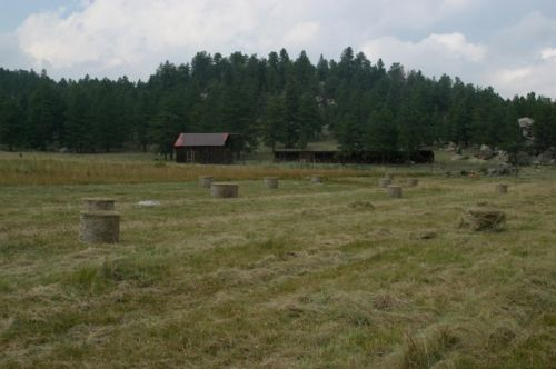 cutting and bailing hay