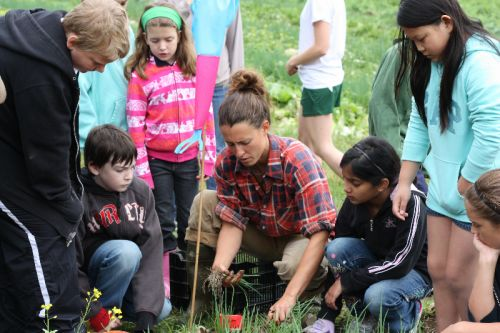 2011 4th graders learning to harvest