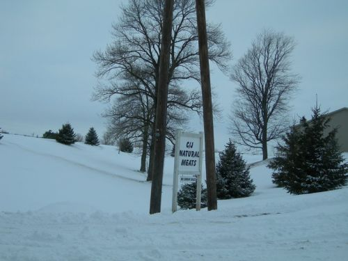 Our sign by the road in the snow