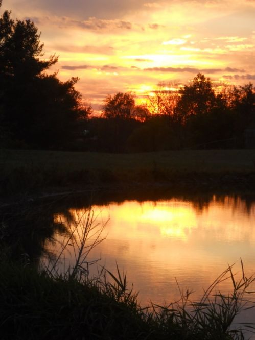 Fall Sunset over the pond