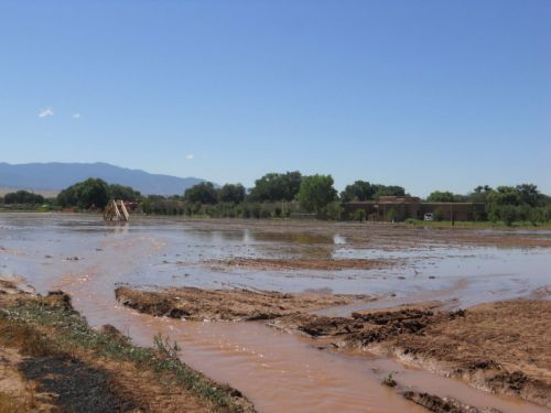 We flood our fields in Corrales.