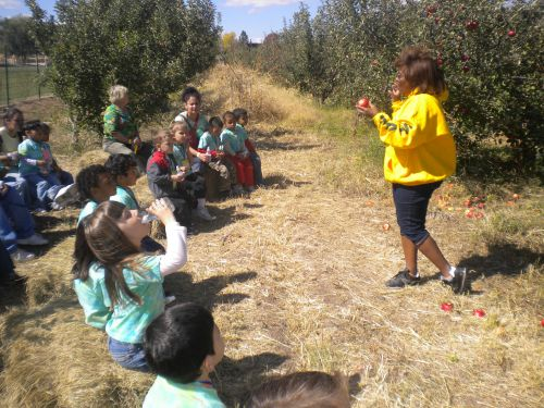 Apple Orchard Classroom