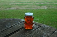 Wildflower Honey: 1 Pound Glass Bear