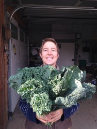 Kale - Bunched