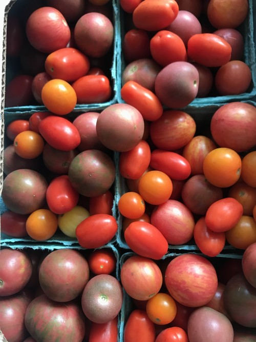 Mixed organic heirloom cherry and grape tomatoes