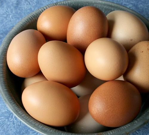 Village Acres Eggs, Dozen