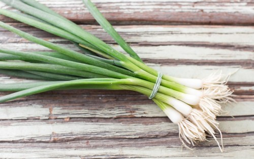 Spring Onions - bunched