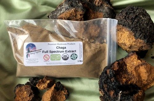 Chaga (l. obiquus) Full Spectrum Extract Powder