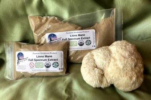 Lions Mane (Hericium sp.) Full Spectrum Extract Powder
