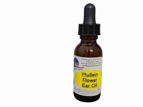 Mullein Flower Ear Oil
