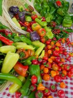 Peppers at market 2009