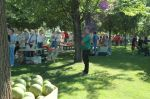 line forming for free watermelon