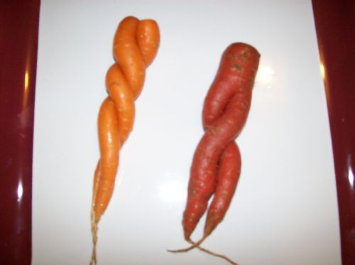 Twisted Carrots