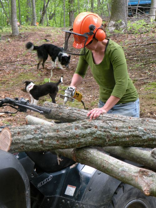 Julie drilling holes in logs.