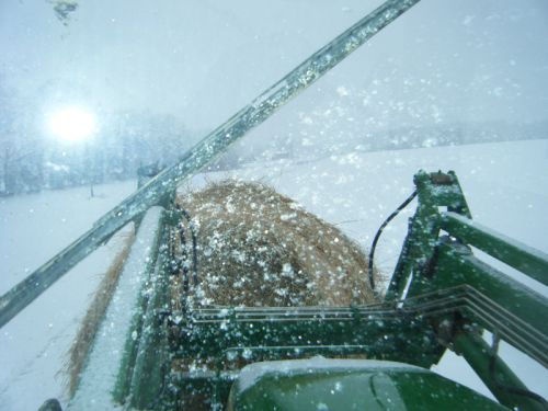 View from inside the tractor, winter 2011