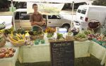 Henry at farm stand