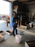 Shannon getting hives ready for spring