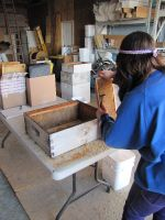 Shannon working on hives