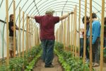 Mike and Justin lead the tour to our high tunnel, where we are growing tomatoes and lettuce