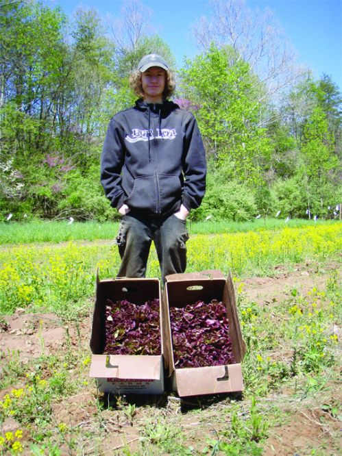 Our intern Chris displaying his red leaf lettuce harvest