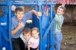 Big brother Jared luring three siblings into the squeeze chute...
