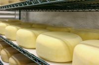 Emmental Swiss - Cave Aged - avg. size .55 lb.-$14.00/lb.