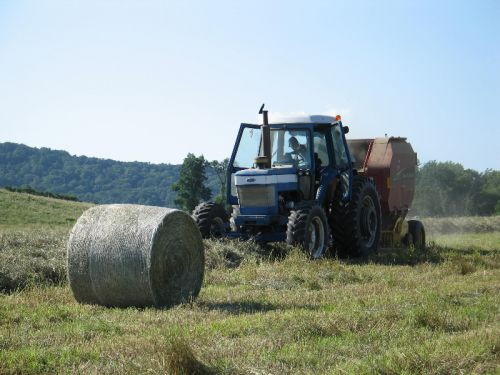 Making Dry Hay 2009