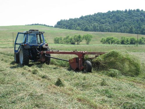 Making Dry Hay 2010