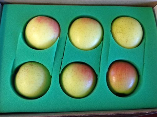 6 Apple Gift Pack