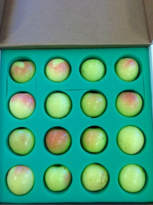 16 Apple Gift Pack