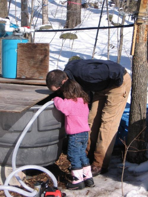Checking sap level in the old woods tank