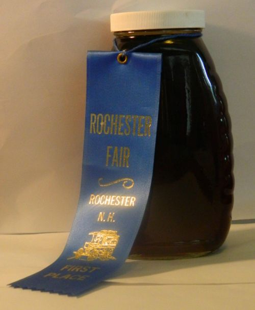 2009 Rochester Fair