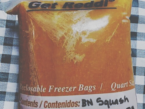 Frozen Butternut Squash, 1lb bag