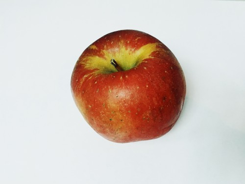 Apples from Ellis Family Farms