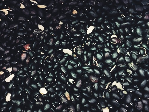 Black Beans from Driftless Organics