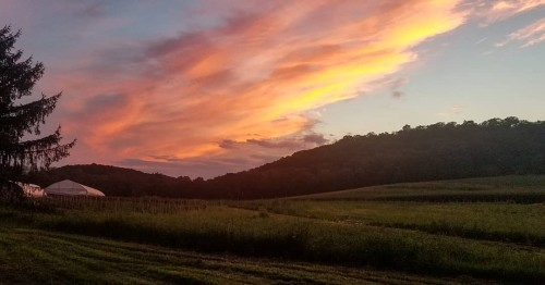 Beautiful Summer Sunset @ the farm!