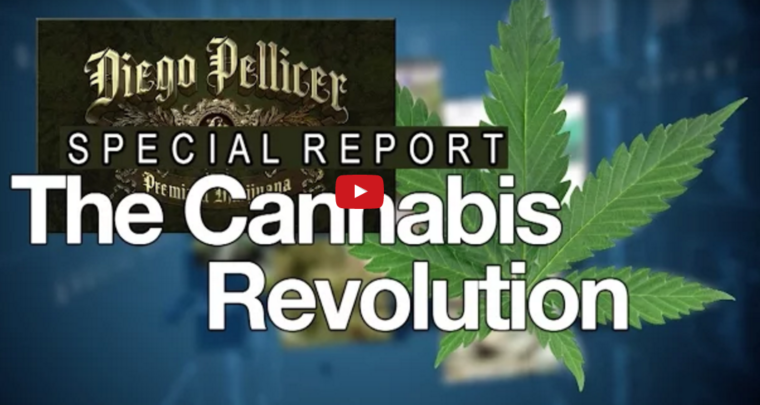The Cannabis Revoltion Video
